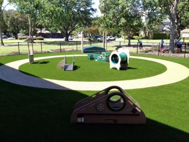 Artificial Grass Photos: Artificial Grass Beaver, Utah Landscaping, Commercial Landscape