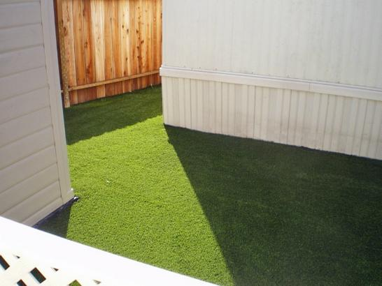 Artificial Grass Photos: Artificial Grass Carpet Tselakai Dezza, Utah City Landscape, Backyard Designs