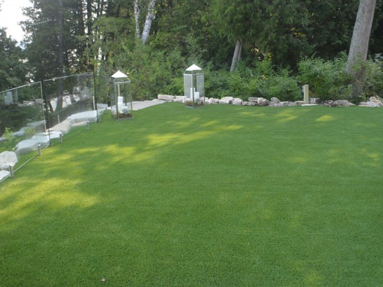 Artificial Grass Copperton, Utah Rooftop, Backyard Garden Ideas artificial grass