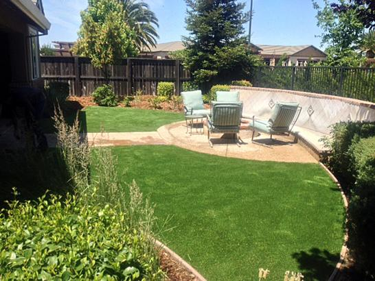 Artificial Grass Photos: Artificial Grass Tropic, Utah Landscape Ideas, Small Backyard Ideas