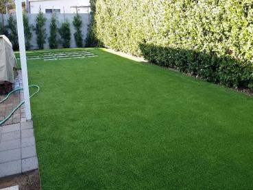 Artificial Grass Photos: Artificial Lawn Bluffdale, Utah City Landscape, Backyard Landscaping Ideas