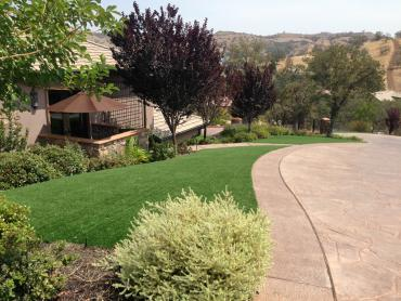 Artificial Grass Photos: Artificial Lawn Dammeron Valley, Utah Lawn And Garden, Front Yard Design