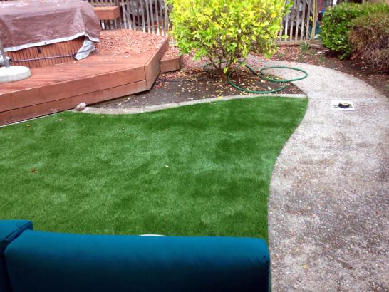 Artificial Grass Photos: Artificial Lawn Junction, Utah Design Ideas, Backyard Landscaping Ideas