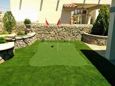 Artificial Grass Photos: Artificial Lawn Kenilworth, Utah Home And Garden, Backyards