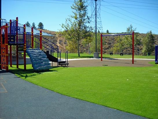 Artificial Grass Photos: Artificial Turf Cost Castle Valley, Utah Paver Patio, Recreational Areas