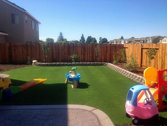 Artificial Grass Photos: Artificial Turf Cost Glendale, Utah Backyard Deck Ideas, Backyard Landscaping