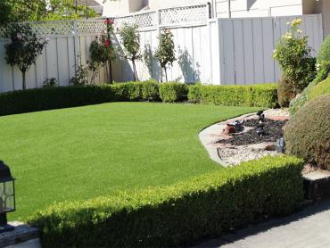 Artificial Grass Photos: Artificial Turf Cost Gunnison, Utah Landscape Ideas, Backyard Design