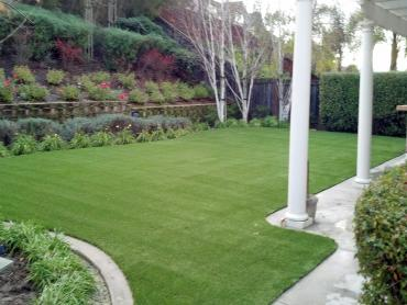 Artificial Grass Photos: Artificial Turf Cost Newcastle, Utah Indoor Dog Park, Backyard Design