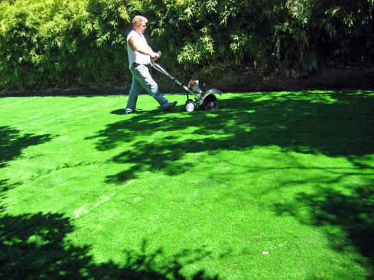 Artificial Grass Photos: Artificial Turf Cost West Mountain, Utah Gardeners, Backyard
