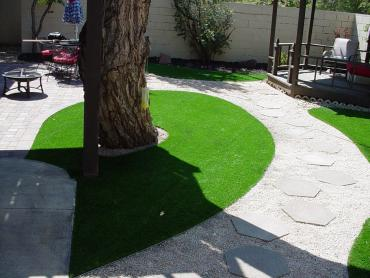 Artificial Grass Photos: Artificial Turf Glenwood, Utah Roof Top, Backyard Design