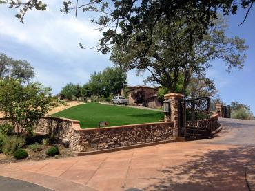Artificial Grass Photos: Artificial Turf Granite, Utah Garden Ideas, Front Yard Landscape Ideas