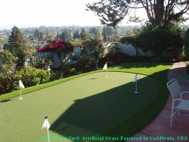 Artificial Grass Photos: Artificial Turf Installation Millcreek, Utah Outdoor Putting Green, Backyard Makeover