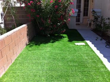 Artificial Grass Photos: Artificial Turf Whiterocks, Utah Lawn And Garden, Front Yard Ideas