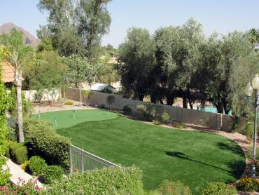 Artificial Grass Photos: Best Artificial Grass Orderville, Utah Backyard Putting Green, Backyard Landscaping