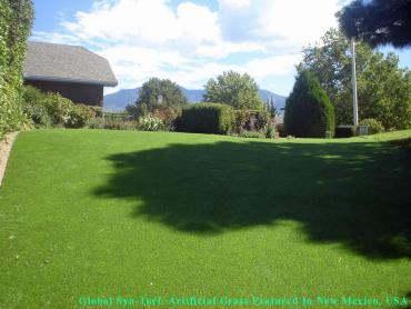 Best Artificial Grass Sandy City, Utah Pet Grass, Backyard Design artificial grass