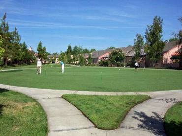 Artificial Grass Photos: Best Artificial Grass Springville, Utah Indoor Putting Green, Commercial Landscape