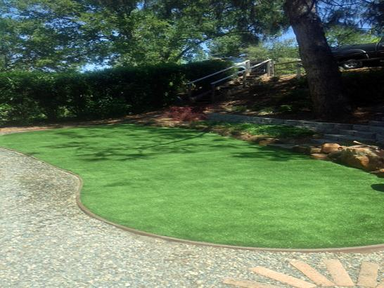 Artificial Grass Photos: Fake Grass Amalga, Utah Landscaping Business, Backyard Garden Ideas
