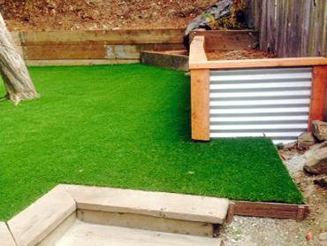 Artificial Grass Photos: Fake Grass Carpet Riverton, Utah Landscape Ideas, Backyard Makeover