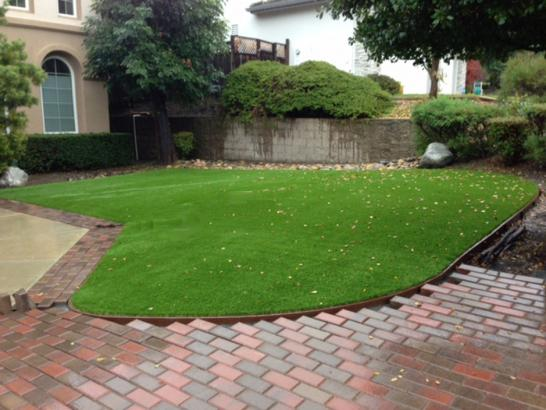 Fake Grass Carpet Whiterocks, Utah Gardeners, Front Yard Design artificial grass