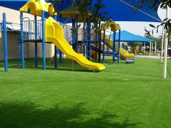 Artificial Grass Photos: Fake Grass East Carbon City, Utah Landscape Design, Commercial Landscape
