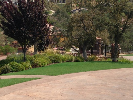 Fake Turf LaVerkin, Utah Landscape Rock, Backyard Landscaping artificial grass
