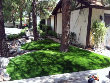 Artificial Grass Photos: Faux Grass Ephraim, Utah, Front Yard