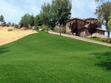 Artificial Grass Photos: Faux Grass Green River, Utah Paver Patio, Front Yard Landscaping