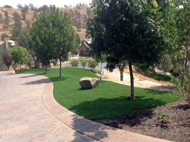 Artificial Grass Photos: Grass Carpet Fairview, Utah Landscape Rock, Small Front Yard Landscaping
