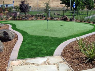 Artificial Grass Photos: Grass Carpet Millcreek, Utah Golf Green, Backyard Landscape Ideas