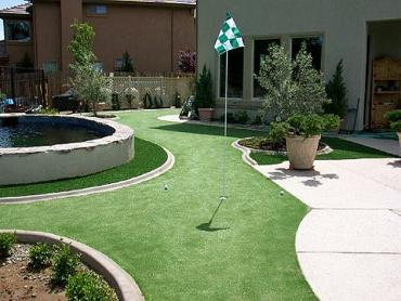 Artificial Grass Photos: Grass Carpet Syracuse, Utah Outdoor Putting Green, Backyard