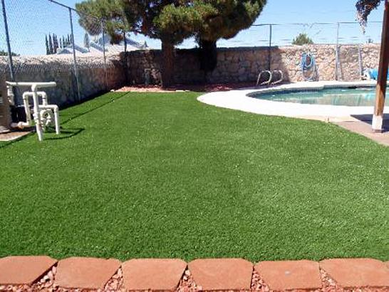 Artificial Grass Photos: Grass Installation Bryce Canyon City, Utah Landscape Design, Natural Swimming Pools