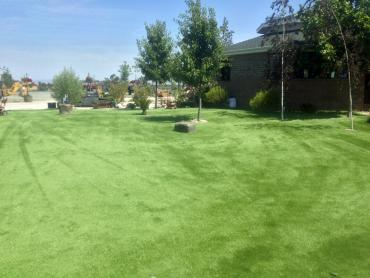 Artificial Grass Photos: Grass Installation Naples, Utah Dog Run, Recreational Areas