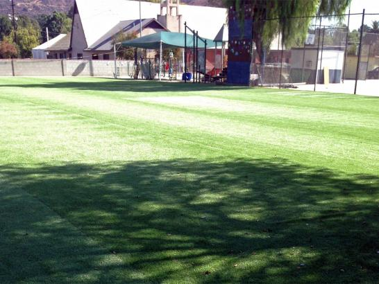 Artificial Grass Photos: Grass Installation Oljato-Monument Valley, Utah Landscape Design, Recreational Areas