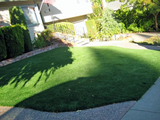 Artificial Grass Photos: Grass Turf Fairview, Utah Rooftop, Front Yard
