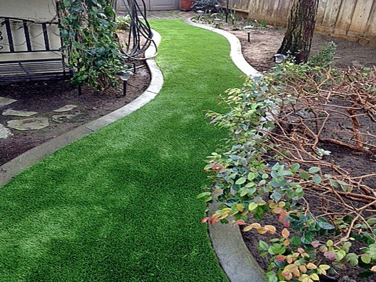 Artificial Grass Photos: Grass Turf Hooper, Utah Design Ideas, Beautiful Backyards