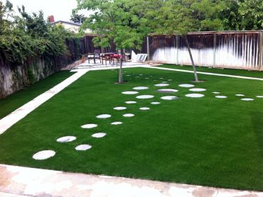Artificial Grass Photos: Grass Turf Mountain Green, Utah Design Ideas, Backyards