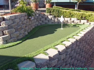 Grass Turf Orem, Utah Landscape Ideas, Backyards artificial grass