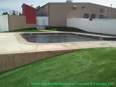 Artificial Grass Photos: Green Lawn South Jordan Heights, Utah Design Ideas, Backyard Pool