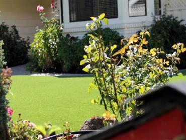Artificial Grass Photos: How To Install Artificial Grass Perry, Utah Landscaping, Front Yard Ideas