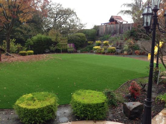 Artificial Grass Photos: Lawn Services Dugway, Utah City Landscape, Backyard Design
