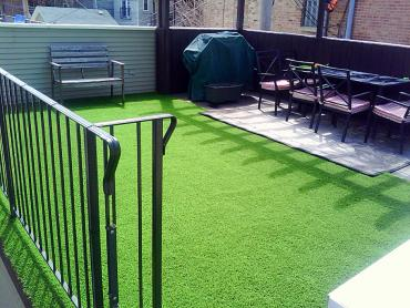 Artificial Grass Photos: Lawn Services Elk Ridge, Utah Artificial Turf For Dogs, Backyard Design