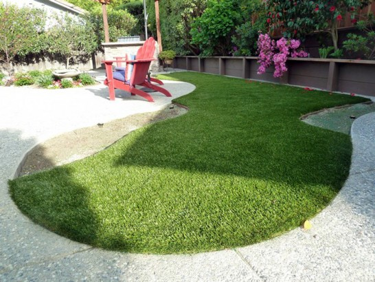 Artificial Grass Photos: Lawn Services Fillmore, Utah Dog Park, Backyard Landscape Ideas