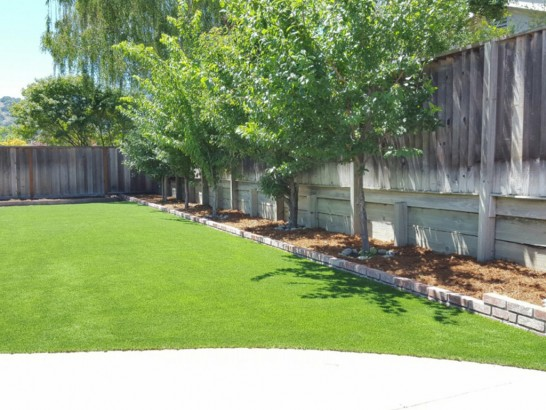 Artificial Grass Photos: Lawn Services Levan, Utah Lawns, Backyard Designs
