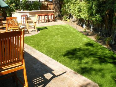 Artificial Grass Photos: Lawn Services Parowan, Utah Pet Grass, Backyard