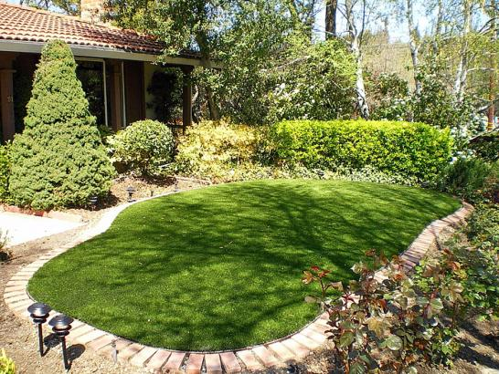 Artificial Grass Photos: Lawn Services Taylorsville, Utah Roof Top, Backyard Landscape Ideas