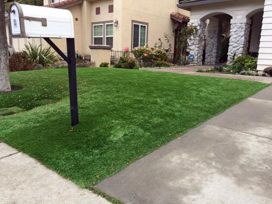 Artificial Grass Photos: Outdoor Carpet Snowville, Utah Landscape Ideas, Front Yard Landscape Ideas