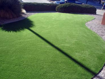 Artificial Grass Photos: Outdoor Carpet Spanish Valley, Utah Rooftop, Front Yard Landscape Ideas