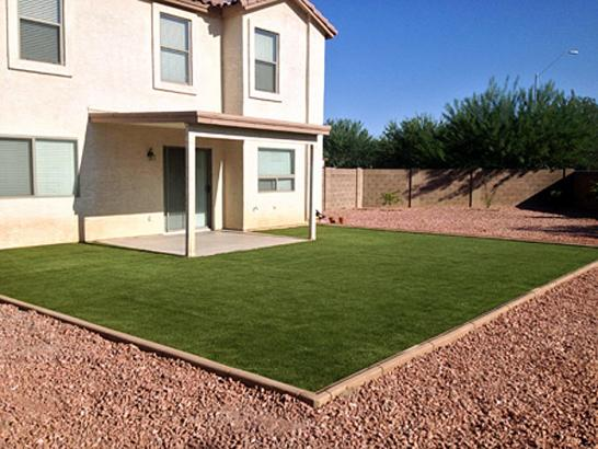 Artificial Grass Photos: Plastic Grass Alpine, Utah Lawn And Garden, Backyard Ideas
