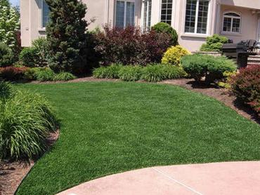Artificial Grass Photos: Plastic Grass Fillmore, Utah Landscape Ideas, Front Yard Landscaping