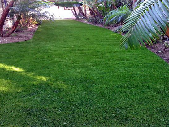 Artificial Grass Photos: Plastic Grass Ophir, Utah Landscape Rock, Beautiful Backyards